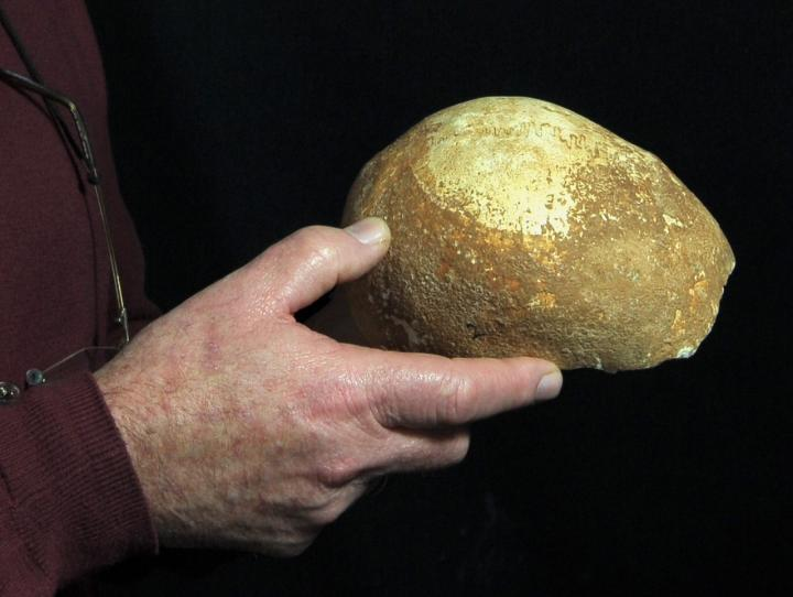 Photo courtesy of : Clara Amit, Israel Antiquities Authority
