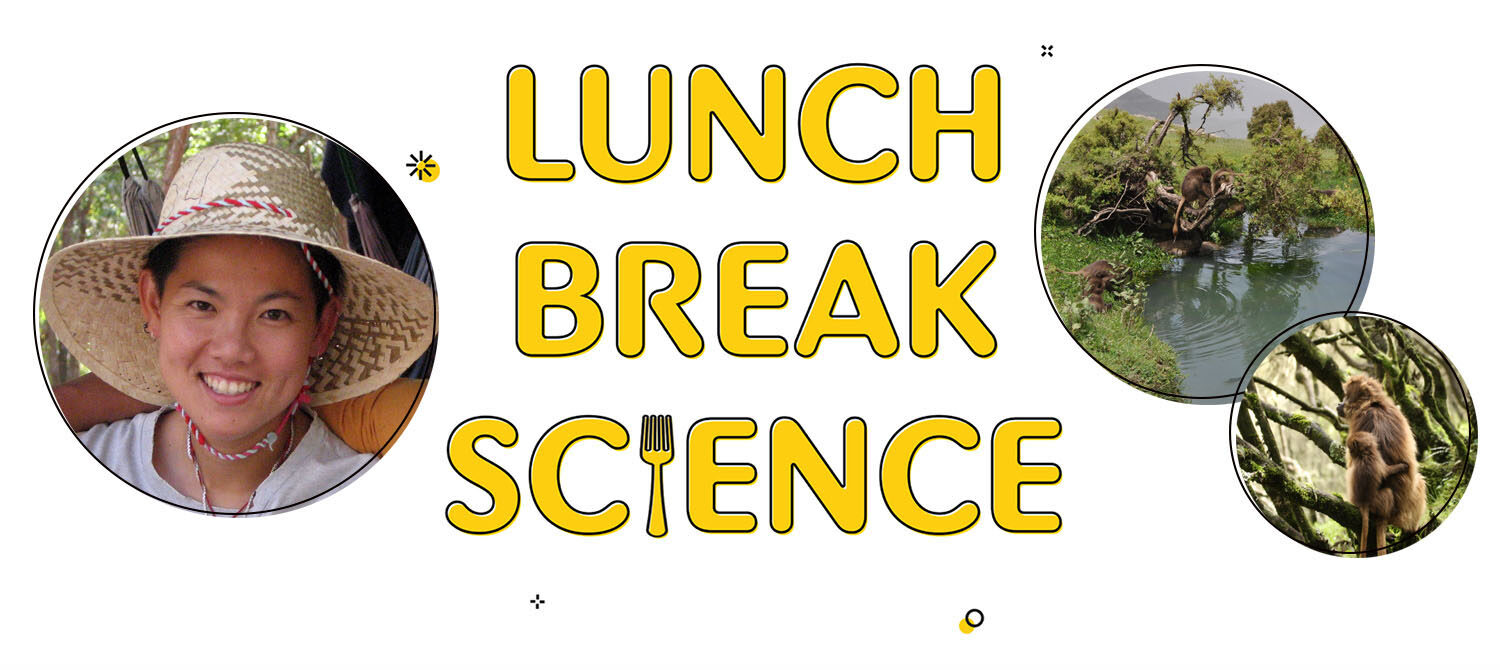 Leakey Foundation grantee Amy Lu appears on Lunch Break Science January 21, 2021