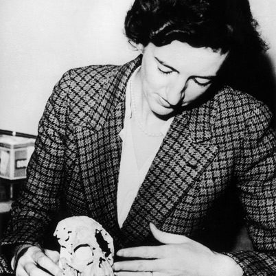 Mary Leakey with proconsul in 1948.