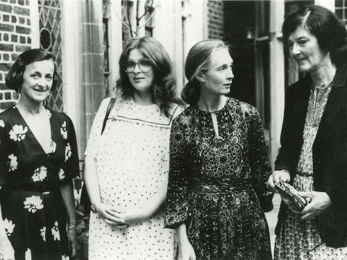 "Founding member Joan Travis (left) with ""Leakey's Angels"" Brute Galdikas, Jane Goodall, and Dian Fossey."