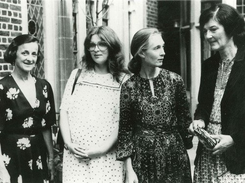 "Founding member Joan Travis (left) with ""Leakey's Angels"" Brute Galdikas, Jane Goodall, and Dian Fossey."