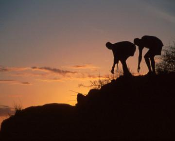 fossil hunt sunrise