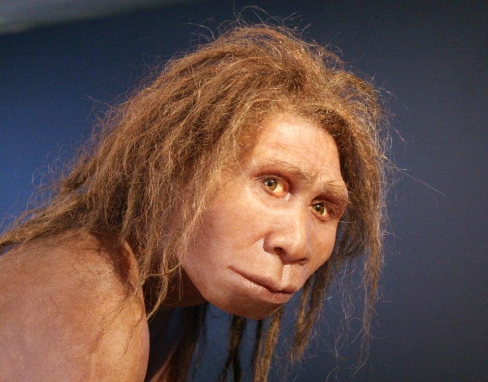 """Homo georgicus"" by 120 - Own work (photograph), model by Élisabeth Daynes. Licensed under CC BY-SA 3.0 via Wikimedia Commons."