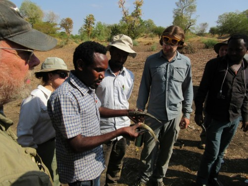 American and Ethiopian students learning about different fish species found in the Shinfa River.