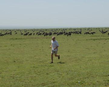Lieberman-serengeti