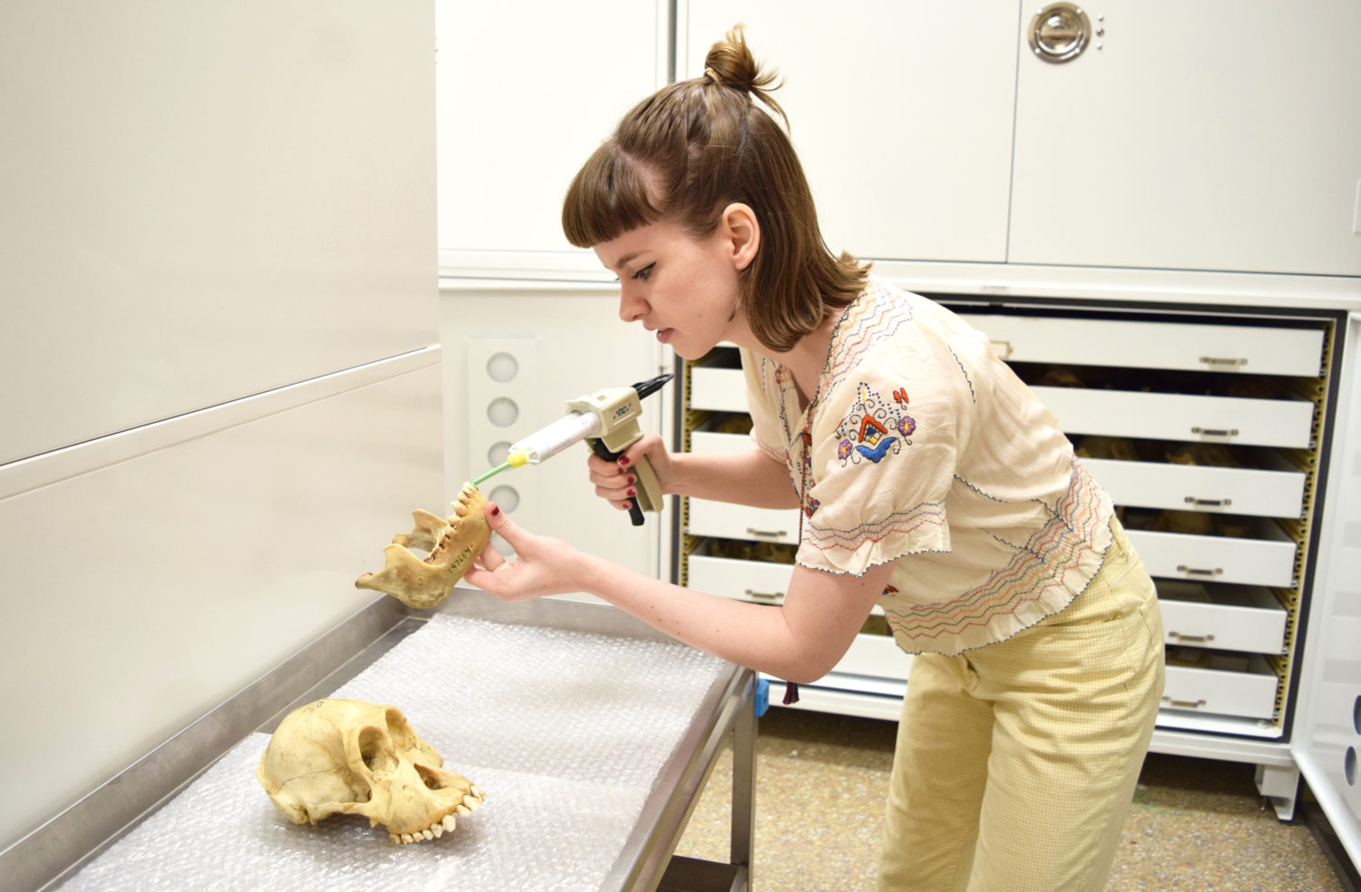 Kathryn McGrath collecting dental impressions of orangutan teeth at the Smithsonian's National Museum of Natural History