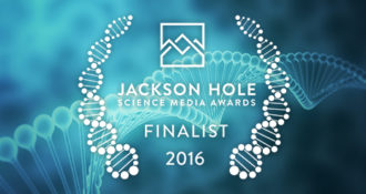 The Leakey Foundation's Origin Stories podcast was chosen as a finalist in the 2016 Science Media Awards competition.