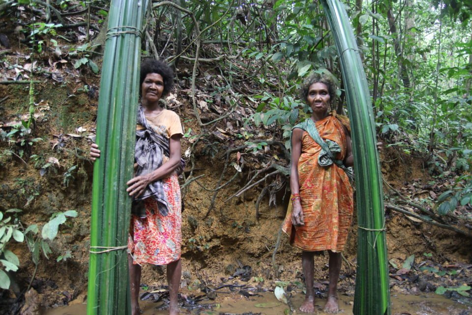 Two Batek women collecting materials to build mats, which they use for sitting and sleeping in their thatch shelters.