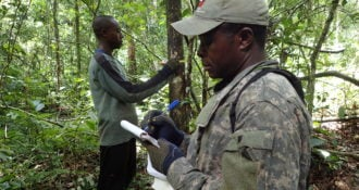 Your generous gift will help fund scientists in the field like Ekwoge Abwe studying chimpanzees in Cameroon.