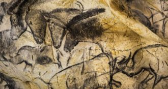 Animal paintings on the wall of Chauvet Cave, France.
