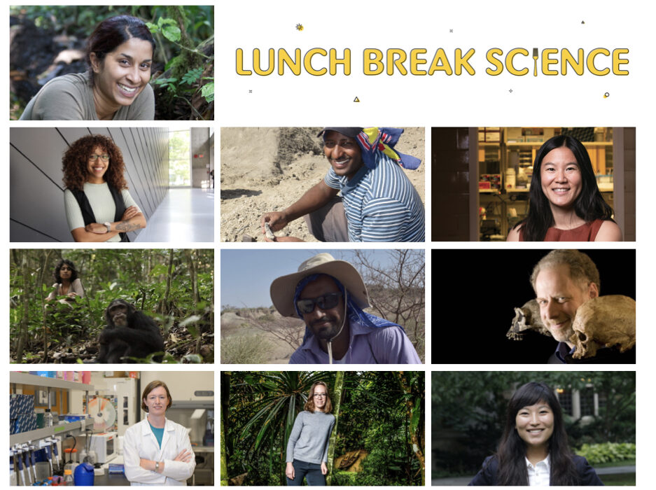A collage of 10 photos of scientists.