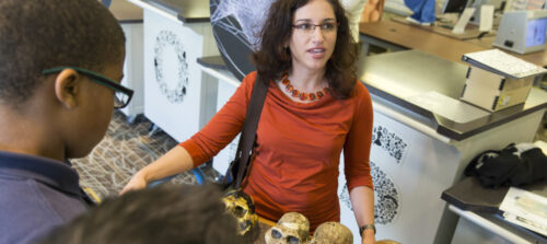 Dr. Briana Pobiner communicates with the public about fossil humans